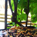                    Tuscan wine grape pie made with their Shiraz grapes from vineyards on the prop