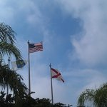                   Flags flying in front of hotel (photo taken from pool area)