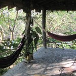                    Our private hammocks