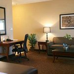 Hampton Inn & Suites Ft. Worth Burleson照片