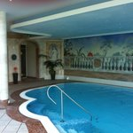  Swimming Pool - Larchenhof Hotel - next door Hotel