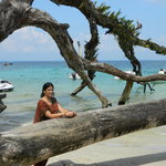 Tree Kissing Beach