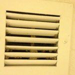                    Mold in shower vent - my parents had the same thing in theirs