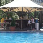                    The quiet pool bar