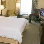 Hilton Garden Inn Beaumont Texas Hotel Room with King Bed