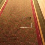 torn carpet on main hall