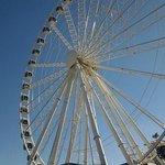                    Sky Wheel, Myrtle Beach Attraction