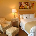  Luxurious King Guestroom