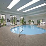  Indoor Pool and Spa (2)