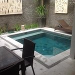 Plunge pool- kids loved it!
