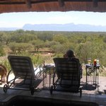                   View from the pool, overlooking the bush
