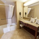  County Inn &amp; Suites, Tampa East Guest Rm Bathroom