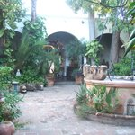                    The enclosed garden at Hotel Mansion