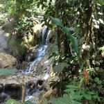                    one of the twenty waterfalls on this trek near Rio Claro