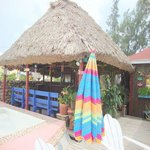 Bar And Pool Thatched Roof