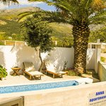 suite with private pool - pool with wooden sunbeds and palm trees & olive tree