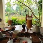 breakfast overlooking the rice paddies