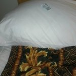 Stay away!!!!! Condom on pillow when we came in to sleep!!