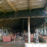                    Tanda Tula Bar Area