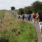 Sally Mosley Guided Walks -  Tours