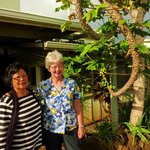 Linda with Millie near papaya tree.