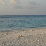                    Maafushi Beach