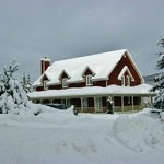 Wildberry Inn / Aux Baies Sauvages