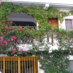The front of the building with the beautiful flowers surrounding the patio