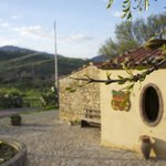                    Beautiful landscape around the agriturismo &quot;A Rametta&quot;