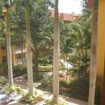                    View of the Courtyard from the room
