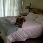 Bluewater Beachfront Guest House Foto
