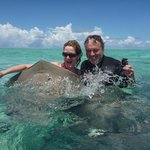                    stingray trip