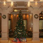                                      Christmas tree in main lobby