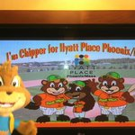  Meet the Hyatt Helper Cubs this Spring Season!
