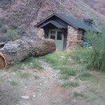 cabin at Phantom Ranch