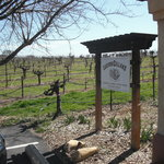  Castoro Cellars