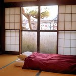 The downstairs guest rooms have views of our small, but diligently tended Japanese garden.