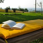 Sunbeds on the grass. A book with a view!