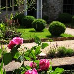Foto van The Old Vicarage Bed and Breakfast Somerset