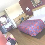 great room clean and large! wonderful value & experience!!!
