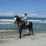 Cheval sur la plage faire attention