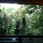 View from bedroom of Mala Hale Bungalow