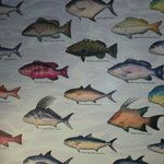 Colorful guide to the many species of local fish on the wall