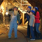 Consolidated Gold Mine