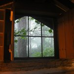 View from the window in the den area in The Woodshed