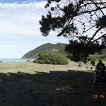                    beach/ocean view from tent sites