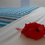                    Zanzibar. Letto con fiore di ibiscus.