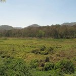 Photo of Wild View Home Stay