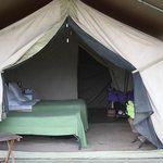 Serengeti Savannah Camps Foto