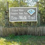 Crystal River Perserve State Park Eco-Walk
